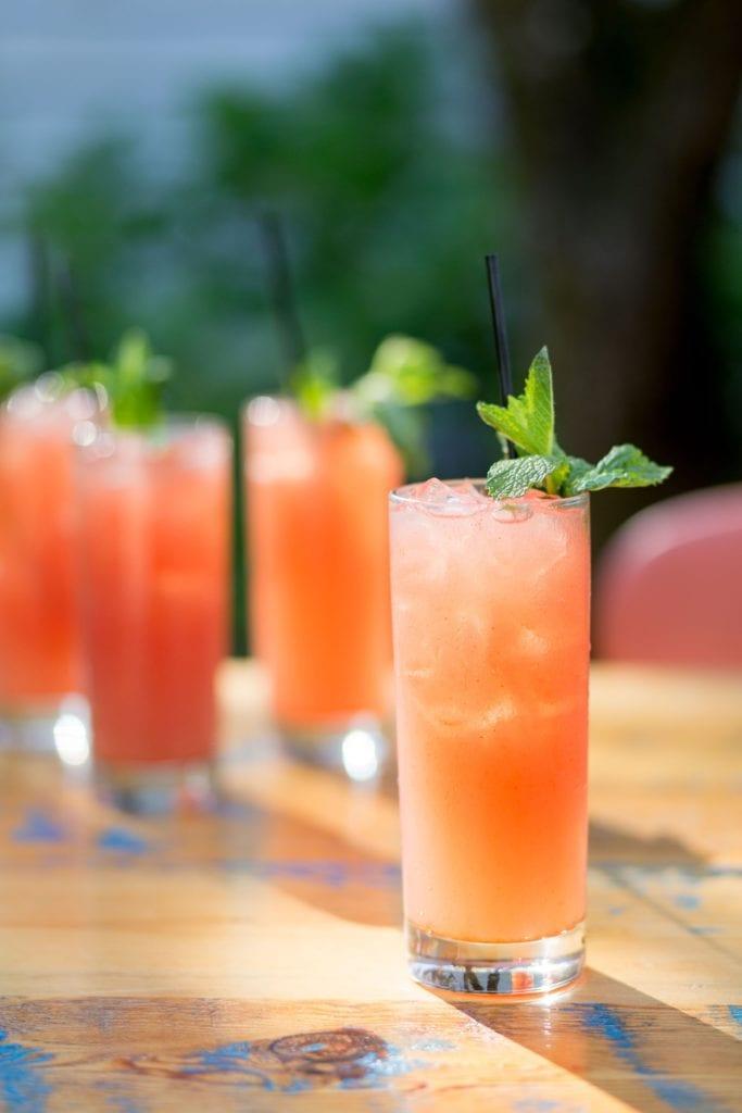 Watermelon–Garam Masala G & Ts